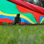 Young boy crawling on grass below a rainbow parachute